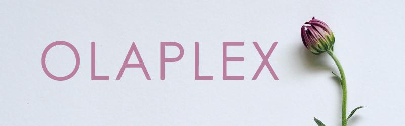 brand_menu_olaplex